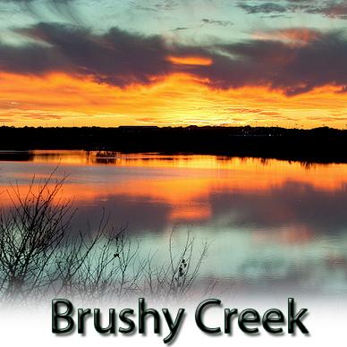 casual encounter free brushy creek